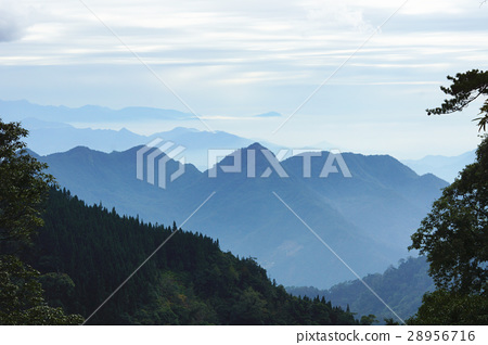 山景 28956716