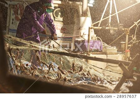 日本漁業形象 28957637