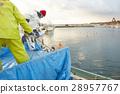 費希爾 漁夫 漁業 28957767