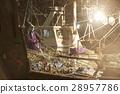 魚 費希爾 漁夫 28957786