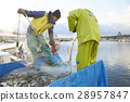 Working fishermen 28957847