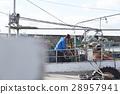 費希爾 漁夫 漁業 28957941