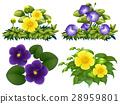 小組 團隊 花朵 28959801