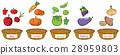 水果 蔬菜 颜色 28959803