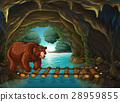 Grizzly bear in the cave 28959855