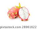 火龙果 龙 水果 28961622