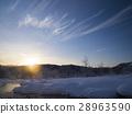 dawn, snow, scene 28963590