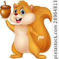 squirrel, cartoon, nut 28964813