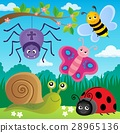 spring animals insect 28965136