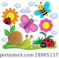 spring animals insect 28965137