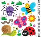 spring animals insect 28965139