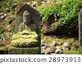 moss, buddha statue, buddhism 28973913