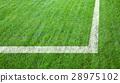 Football or soccer field 28975102