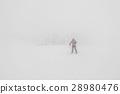 หนาว,เย็น,น้ำแข็ง 28980476