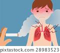 second-hand smoking, cigarette, vector 28983523