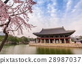 Spring at Gyeongbokgung Palace, Seoul, South Korea 28987037