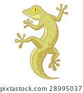 Cartoon smiling Gecko 28995037