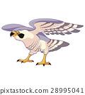 falcon, bird, hawk 28995041
