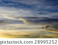 Sunset Sky Panorama 28995252