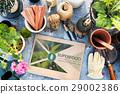 Fresh Food Healthy Lifestyle Organic 29002386