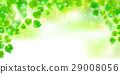 新的綠色葉子綠色背景 29008056
