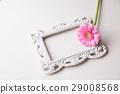 相框和非洲菊 29008568