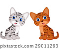 Cute baby cat cartoon 29011293