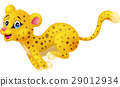 cheetah cartoon animal 29012934
