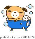สุนัข,สุนัช,สัตว์ 29014674