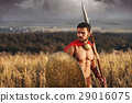 Muscular medieval warrior standing in the field 29016075