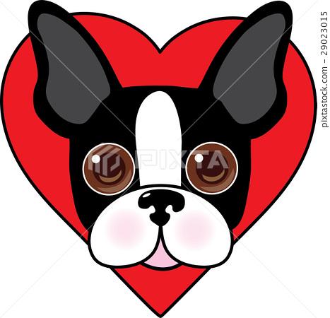 Boston Terrier Face 29023015