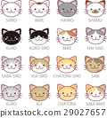 แมว,สัตว์,ภาพวาดมือ สัตว์ 29027657