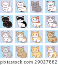 cat, pussy, neko 29027662