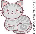 animal, animals, cat 29027841