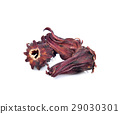 Dried roselle isolated on the white background. 29030301