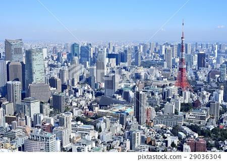 도쿄 도시 풍경 도쿄 타워 29036304