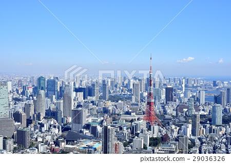 도쿄 도시 풍경 도쿄 타워 29036326