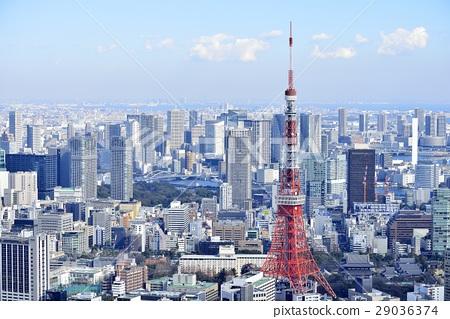 도쿄 도시 풍경 도쿄 타워 29036374
