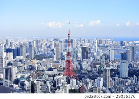 도쿄 도시 풍경 도쿄 타워 29036376