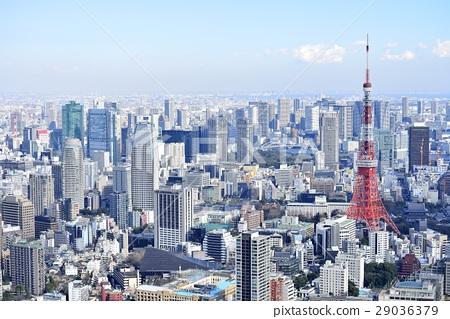도쿄 도시 풍경 도쿄 타워 29036379