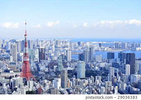 도쿄 도시 풍경 도쿄 타워 29036383