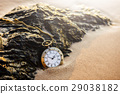 Vintage pocket watch on golden sand beach 29038182