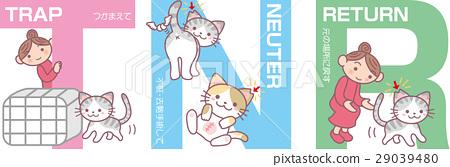 矢量 流浪貓 貓耳 29039480
