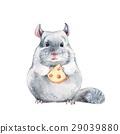 鼠標 老鼠 動物 29039880