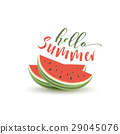 card summer melon 29045076