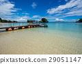 冲绳 海洋 海 29051147