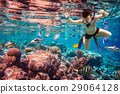 Snorkeler Maldives Indian Ocean coral reef. 29064128