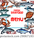 Seafood menu card or poster vector template 29067193