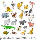 动物 宠物 卡通 29067315