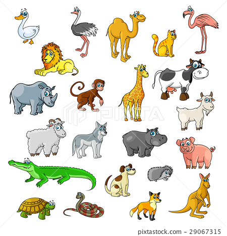 Zoo animals, birds and pets vector cartoon icons 29067315